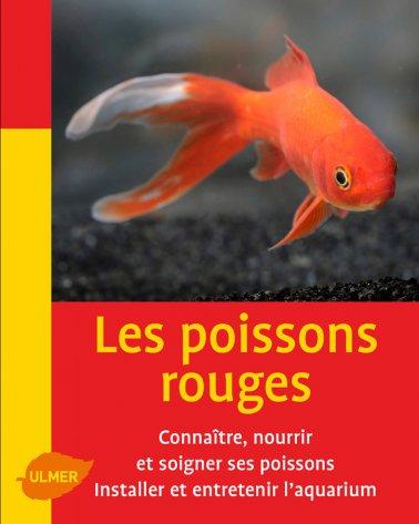 Les Poissons Rouges Mini Maxi Jardinerie Villaverde